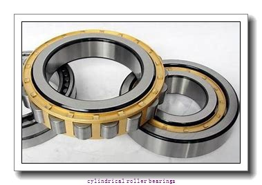 30 mm x 55 mm x 13 mm  NACHI NP 1006 cylindrical roller bearings