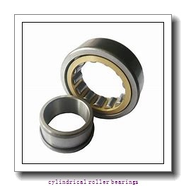 75 mm x 130 mm x 31 mm  CYSD NU2215E cylindrical roller bearings
