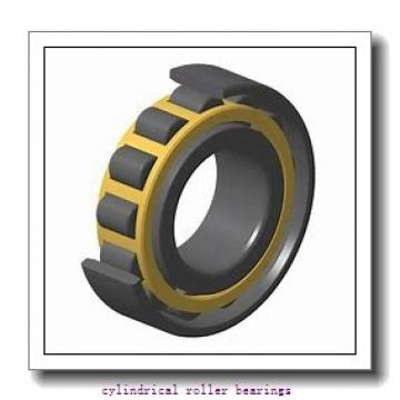 55 mm x 90 mm x 46 mm  NSK RS-5011 cylindrical roller bearings