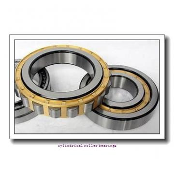 25 mm x 80 mm x 21 mm  FBJ NU405 cylindrical roller bearings