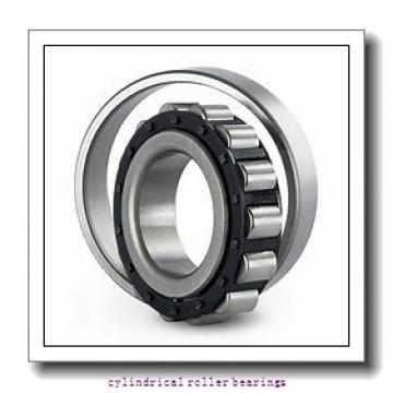 30 mm x 72 mm x 27 mm  KOYO NUP2306 cylindrical roller bearings