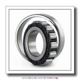 380 mm x 560 mm x 135 mm  NBS SL183076 cylindrical roller bearings