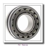 Fag 6006 rsr   Flange Block Bearings