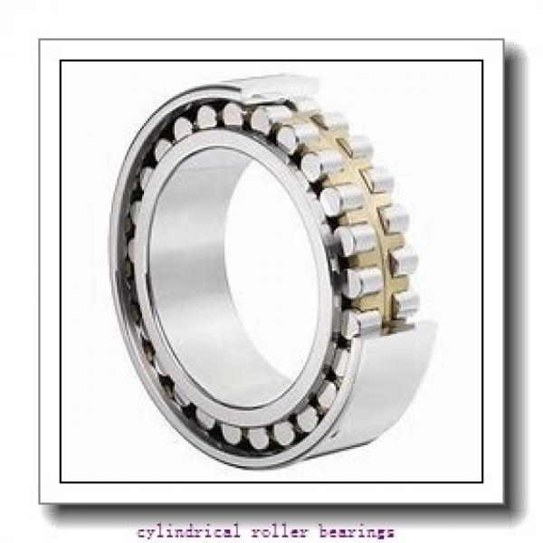 75 mm x 115 mm x 30 mm  INA SL183015 cylindrical roller bearings #2 image